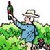 Bill Collins Understands the Terroir of St. Helena